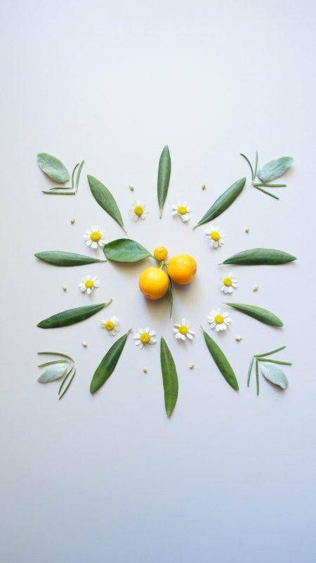 Food/floral design - catalinapenciu.ro